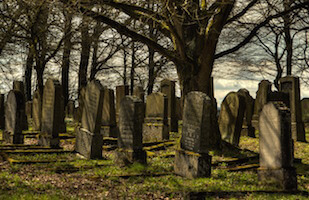 funeral planning guide cemetery